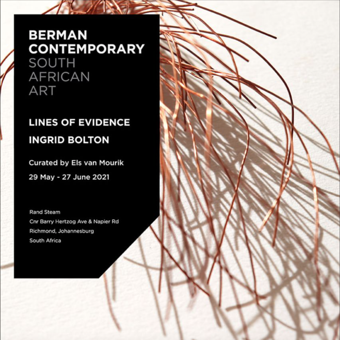 Lines of evidence, Ingrid Bolton, berman contemporary, art and about africa